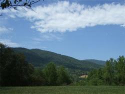 Raspberry Hill